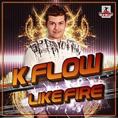 Like Fire de Various Artists