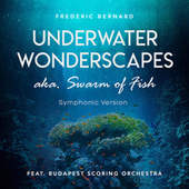 Underwater Wonderscapes Aka. Swarm of Fish (Symphonic Version) by Frederic Bernard