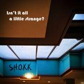 Isn't It All a Little Strange? by Shokk
