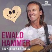 Ein kleines Lächeln von Ewald Hammer