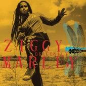 Dragonfly von Ziggy Marley