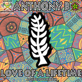 Love of a Lifetime by Anthony B