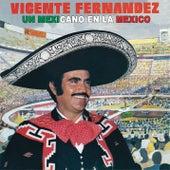 Un Mexicano En La México de Vicente Fernández