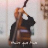 Mellow Jazz Beats by Various Artists