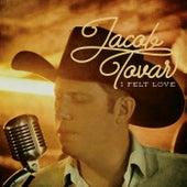 I Felt Love by Jacob Tovar