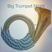 Big Trumpet Night de Various Artists