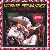 Por Tu Maldito Amor de Vicente Fernández