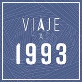 Viaje a 1993 de Various Artists