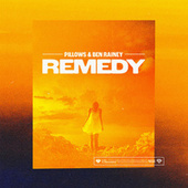 Remedy by Pillows