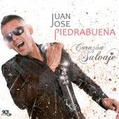 Corazón Salvaje de Juan José Piedrabuena