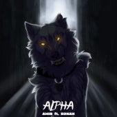 Alpha von Amir