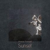 Hoarse Trumpet Sunset von Various Artists
