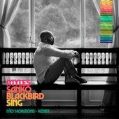 Blackbird Sing (Mo' Horizons Remix) di Myles Sanko