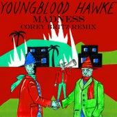 Madness (Corey Britz Remix) von Youngblood Hawke