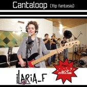 Cantaloop (Flip Fantasia) by Ilaria_F
