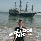 AUTOMOTIVO - TIME de DJ Wallace NK