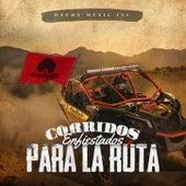 Corridos Enfiestados Para La Ruta de Various Artists