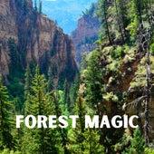 Forest Magic de Yoga Tribe