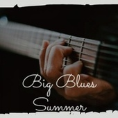 Big Blues Summer by Various Artists