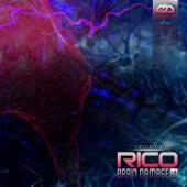 Brain Damage by Rico
