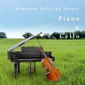 鋼琴與大提琴: 自然森林的閱讀時光 by 貴族音樂深度睡眠