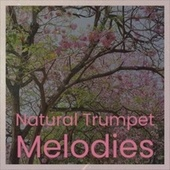 Natural Trumpet Melodies de Various Artists