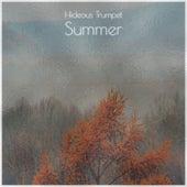 Hideous Trumpet Summer de Various Artists