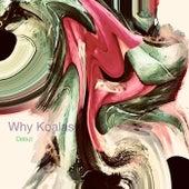 Debut by Why Koalas
