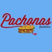 Pachonas by Genitallica