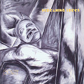 Dust by Screaming Trees