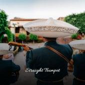 Straight Trumpet de Various Artists