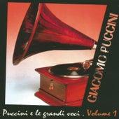 Giacomo Puccini e le grandi voci, Vol. 1 de Various Artists