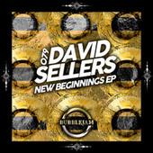 New Beginnings von David Sellers