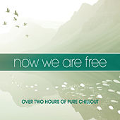 Now We Are Free by Various Artists