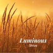 Luminous by Shiva