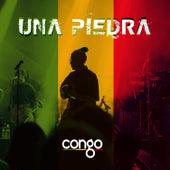Una Piedra by Congo