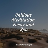 Chillout Meditation Focus and Spa by Sleepy Times