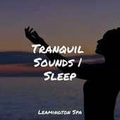 Tranquil Sounds | Sleep by Rain Sounds XLE Library