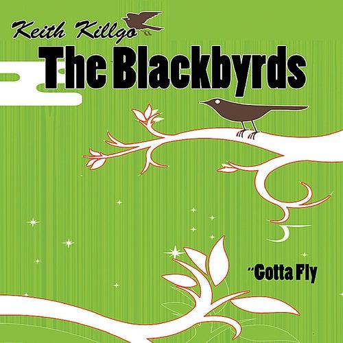Gotta Fly by The Blackbyrds