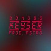 Keyser (Freestyle) by Bonobo