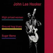 John Lee Hooker by John Lee Hooker