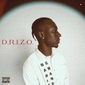 D.R.I.Z.O de Drizo