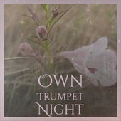 Own Trumpet Night fra Various Artists