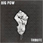 Tribute de Big Pow