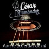 AUN TE ACUERDAS DE MI de César Fernández