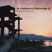 Le Codinero's Pilgrimage (I) de Shawnzy Codinero