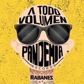 A Todo Volumen Pandemia Records de Los Rabanes