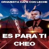 Es para Ti Cheo by Orquesta Cafe Con Leche