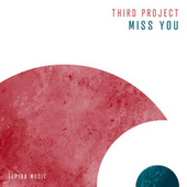 Miss You de Third Project
