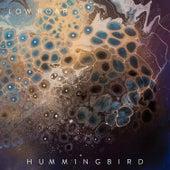 Hummingbird de Low Roar